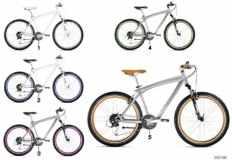 80\_0679 Cruise Bike 2012/13